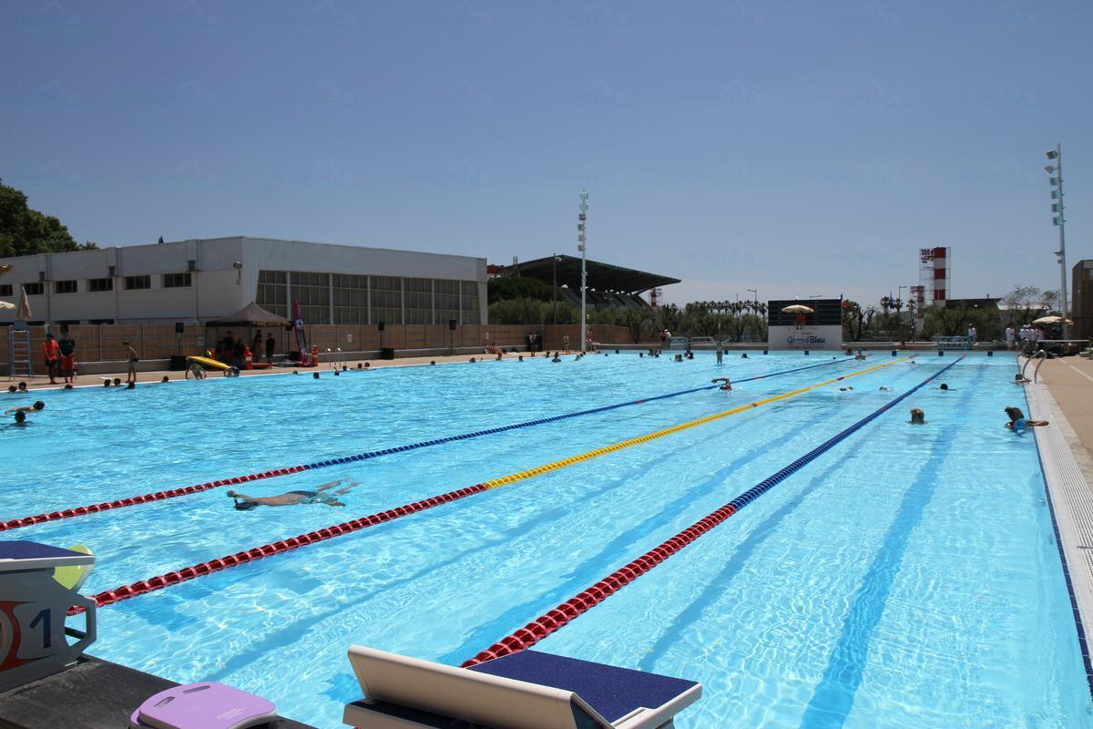 Public swimming pool villa les palmes cannes for Piscine municipale